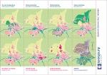 Plattegronden op het omslag van Stad van bos en water