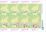 Przewalski ontwerpers, goed in complexe grafische opdrachten. Bouwplaten, plattegronden, huisstijlen, dessins, boeken waarmee u zich onderscheidend presenteert.